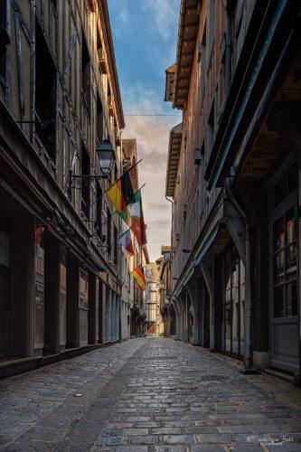 Il n'y a vraiment personne rue Paillot de Montabert, à Troyes.